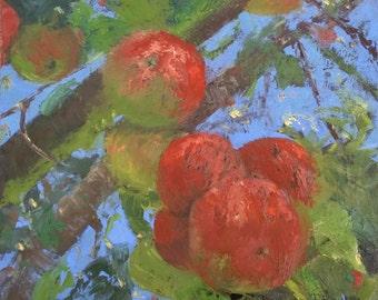 Ready to Hang Art, ORIGINAL OIL Painting, Fruit Art, Food Art, Wall Art 'Apple of Your Eye' by AndolsekArt