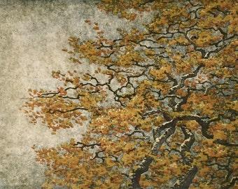 Original Hand Pulled Fine Art Woodblock Print - Tree No. 35, Limited Edition Moku Hanga Print