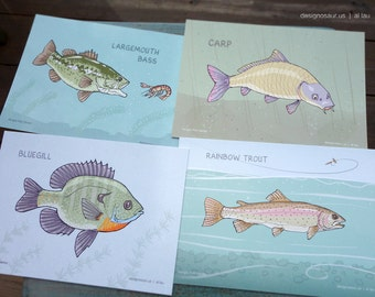 Freshwater Fish postcards (set of 4)