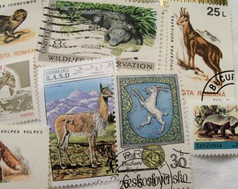 40 Animal Postage Stamps,  Wild Life Stamps, Used Stamps, Postage Stamps, Jungle Animals