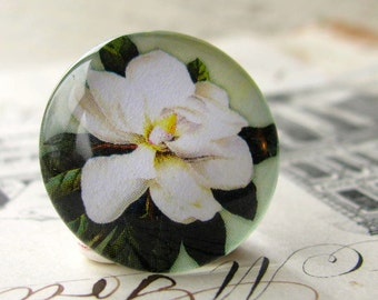 While magnolia, flower cabochon, floral, yellow, waxy green leaves, handmade cabochon, glass cabochon, round 22mm cabochon, flat back image