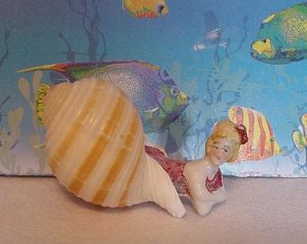 Bathing Beauty resting in a seashell