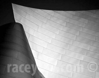 Los Angeles Photography, Modern, Abstract, Black & White, Architecture, Gehry, Disney Concert Hall, Office Decor