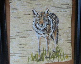 Coyote Hand Painted on Birch Bark, Framed