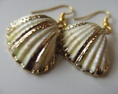 Gorgeous, SHELL, earrings, golden trim,white and golden, electro plated, cream and golden,pearly, by NewellsJewels on etsy