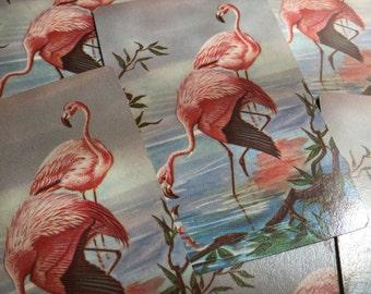 6 Vintage Art Deco Flamingo Playing Cards - EPSTEAM - Pink Flamingos -Souvenir of Florida - Art Deco - Retro Bird - craft trading