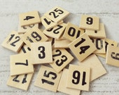 Wood Numbers-Assorted-Mixed Media-Craft Supplies