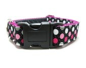 """Houndstown 1"""" Glitterdot Martingale or Buckle Collar Size Small through X-Large"""