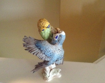Goebel Parakeets