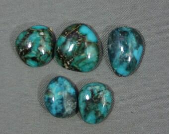Turquoise cabochons set Kingman mine,  A-65