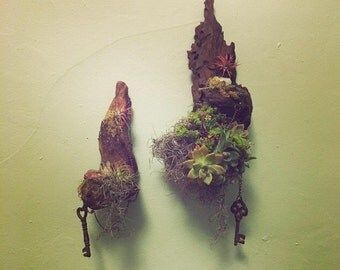 Made to order. Apld as a set. Drift wood succulent wall art. Title: My soul mate, the keys to my heart.