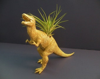 Gold T Rex dinosaur planter with air plant. Perfect gift for him.