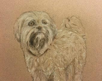 5x7 Colored pencil portrait.