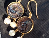 FOSSIL EARRINGS Sterling simple artisan ethnic antique ancient inspired