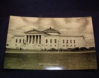 Chicago's Shedd Aquarium 1930's Photograph Postcard Never Used!