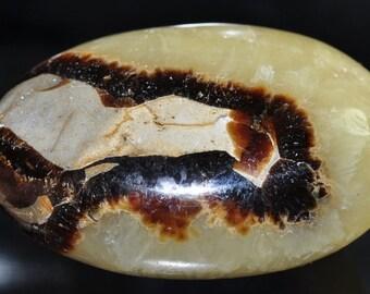 39x54x22mm Madagascar SEPTARIAN NODULE (aka Dragon Stone) Large Metaphysical Healing Palm Worry Stone Gallet - E0980
