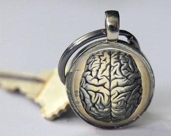 ON SALE Brain Keychain Human Anatomy Medical Science Phrenology Key Chain Key Fob Car Accessories