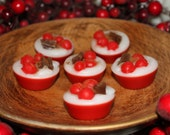 SPICED CRANBERRY Scented Primitive Red Berries Christmas Cupcake Wax Tarts Melts WWOFG