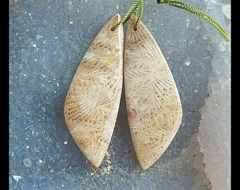 Indonesian Fossil Coral Gemstone Earring Bead,48x16x4mm,10.4g