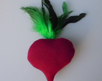 Catnip Beet Cat Toy