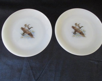 2 Fire King Game Bird - Canadian Goose - Bread and Butter Plates