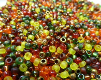 8/0 Autumn Bead Mix Round Glass Seed Beads 10Grams***Free Shipping on all USA Orders***
