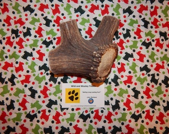 "Organic Jumbo Elk Antler Dog Chew ""Made in Montana"" (Lot C79)"