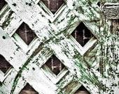 Lattice and Brick, Weathered Door Detail 8x10 White, Green