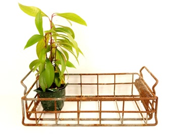 Vintage Industrial Wire Basket Factory Tray (c.1950s) - Collectible, Industrial Rustic Decor