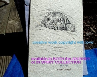 gray ( a best friend's song )old dog/ old dachshund/journey cards/unique empathy condolence cards
