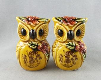 Vintage Owl Ceramic Salt and Pepper Shaker Set Hawaii Made in Japan