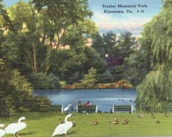 Trexler Memorial Park, Allentown, Pennsylvania - Linen Postcard - Unused (A5)