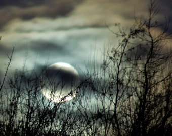 Wolf Moon, mystical clouds full moon photograph, tree silhouette in night sky, teal, rust, amber, charcoal, silver,