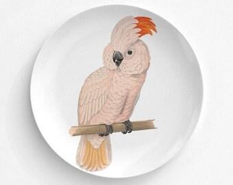 "Salmon Crested Parrot Bird Plate, Melamine Plate, Vintage Bird Illustration, Kitchen, decorative plate, gift, Dinner Plate, 10"" plate,"