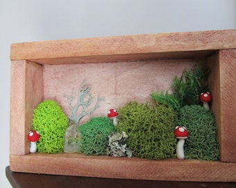 Red Amanita Toadstool Woodland Mushroom & Moss Scene Polymer Clay Shadowbox Sculpture
