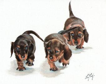 Original Oil Art DACHSHUND MINIATURE Portrait Painting Artist Signed Artwork Puppy Dog