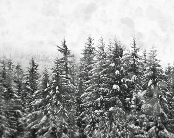 Black and White Nature Photography, Winter Forest Picture, Skiing Wall Art, Snow Photograph, Rustic Home Decor, 8x10 Photo, Nordic Artwork