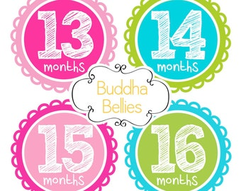 Second Year Baby Monthly Stickers for Baby Girl First Birthday Gift Monthly Stickers Baby Month Stickers Girl Month Milestone Stickers GS276