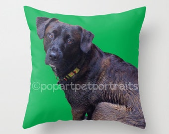 custom pet photo pillow, custom pet pillow, custom photo pillow, pet pillow, photo pillow, custom dog pillow, Personalized Dog Pillow