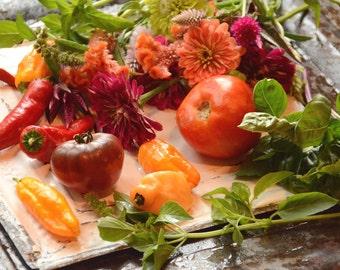 Garden Seed Kit, Gardening Gift, Heirloom Vegetable Seeds, Heirloom Flower Seed, Deluxe Seed Kit with Garden Suppliles