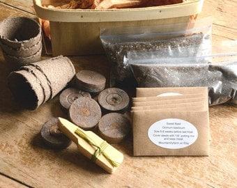 Indoor Herb Garden Kit, Garden Supplies in Gift Basket, Heirloom Herb Kit, Great for Container Gardens and Urban Gardening