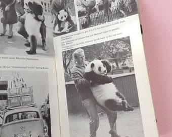 Men and Pandas