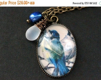 MOTHERS DAY SALE Blue Bird Necklace. Bluebird Pendant with Frosted Glass Teardrop and Pearl. Bird Charm Necklace. Wearable Art Jewelry. Hand