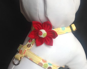 Dog Harness flower set - Silly Circles - Size XS, S, M