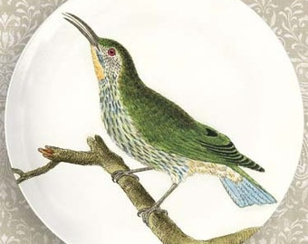 green bird II melamine plate