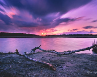 Etheral, Landscape, Tree branch, Water, Sunset, Clouds, Purple, 5x7, 8x12, 16x24, 24x36, Vivid Metal, Metal Print