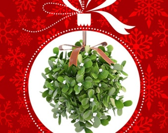 1 oz. Mistletoe Fragrance Oil