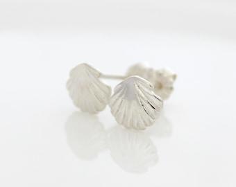 Seashell Earrings • Sterling silver seashell stud earrings • Seashell ear studs