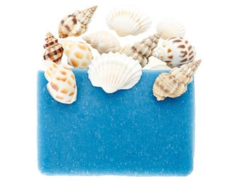 Sea Shells Soap, Beach Soap Handmade, Natural Soap, Mens Soap, Soap for Men, Soap Men, Fun Soap, Soap Sampler, Vegan Soap Bar, Organic Soap