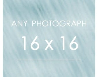 Any Photograph as a 16x16 Print